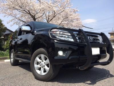 TRJ150 Prado TX-L